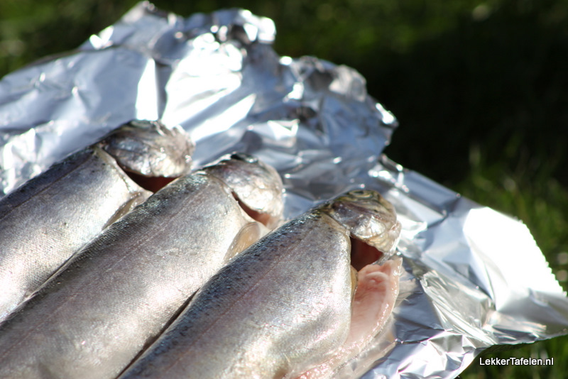 vis-forel-barbecue-grillen