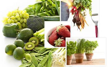 Spoorelementen in onze voeding
