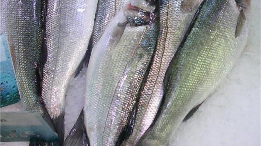 Zeebaarsfilet met Toscaanse kruidenmix op de BBQ in het voorjaar