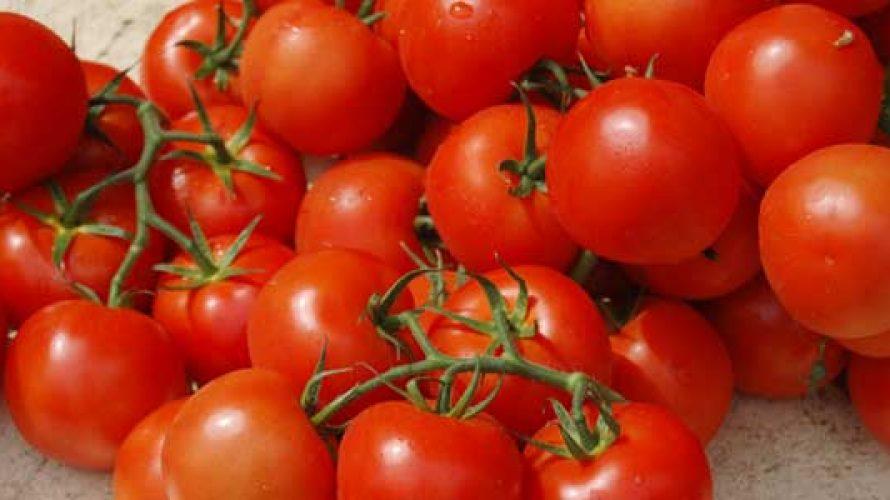 Tomatenrisotto met raapsteeltjes
