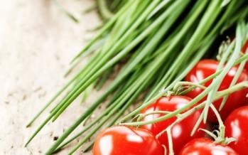 Verse Tomatensaus, echt lekker vers en vijf keer anders