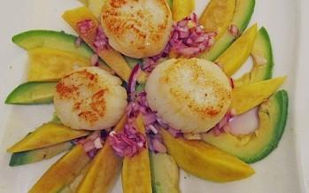 Coquilles op een bedje van avocado-mango met uienvinaigrette
