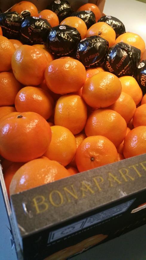 mandarijnen-rassen-kopen
