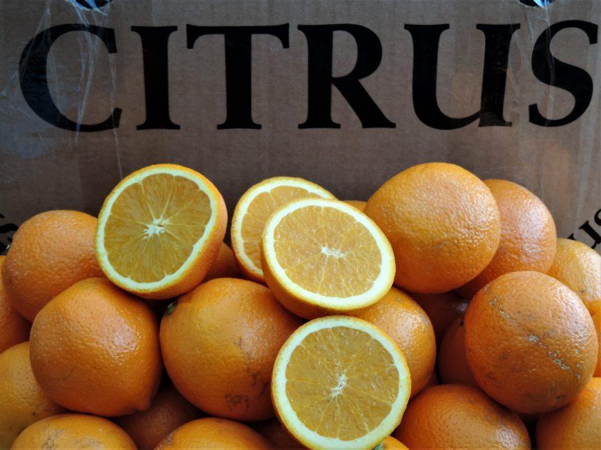 sinaasappel - citrus - recept - recepten