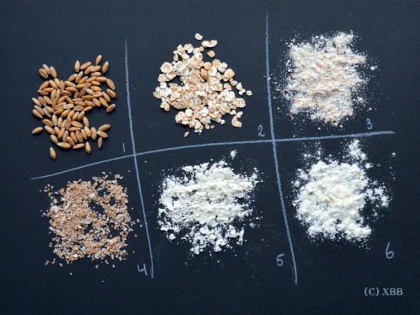 Alles wat je wilt weten over tarwe(meel)