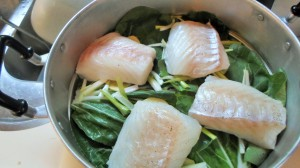 Gestoomde kabeljauw op Aziatische wijze- Proef Azië bij Lidl