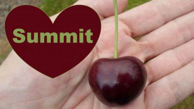 Kersenpluk, een kijkje bij de teler - Summit