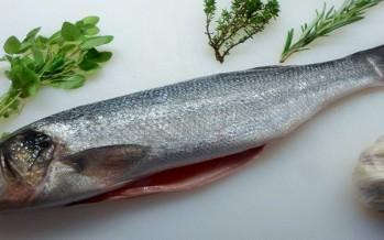 Zeebaars; Durf eens wat anders met vis