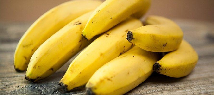 Fruit; Kies voor de smaak van het seizoen  Fruit; Kies voor de smaak van het seizoen
