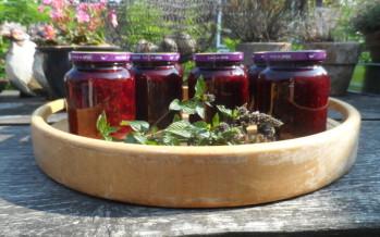 Jam maken; waardevolle knutsel minuutjes in de keuken