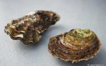 Zeeuwse oesters: seizoen 2015 is begonnen!