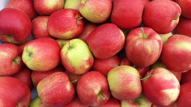 delcorf-delbar-appel-appels-appelen (2)