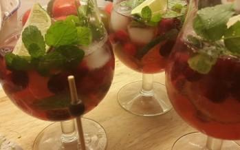 Mojito van cranberry, feestcocktail voor bij het aperitief