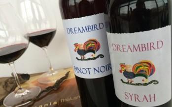 Roemeense wijn en polenta, twee culinaire klimmers