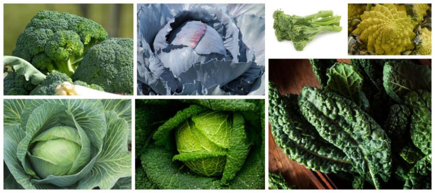 meer verse groenten