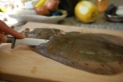 Schol fileren (en andere platvissen)  Schol fileren (en andere platvissen)  Schol fileren (en andere platvissen)  Schol fileren (en andere platvissen)
