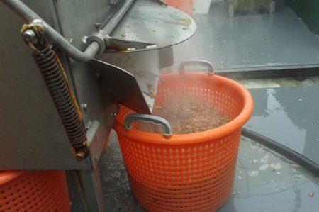 Texelse streekproducten garnalen