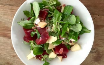 Jonge bieten salade, snel en lekker