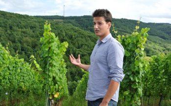 Wijnreis Duitsland – Een boeiende ervaring