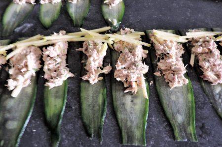 komkommer tonijn rolletjes