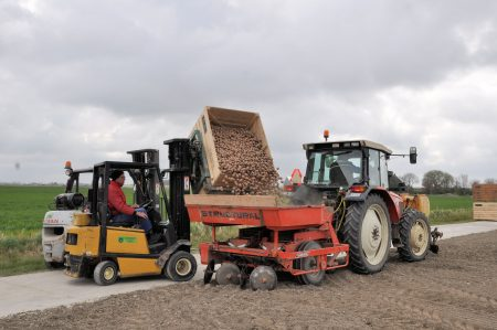 Aardappel bodem tot bord tractor vullen