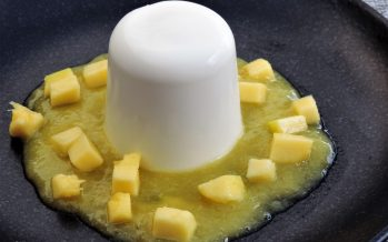 Panna cotta van yoghurt