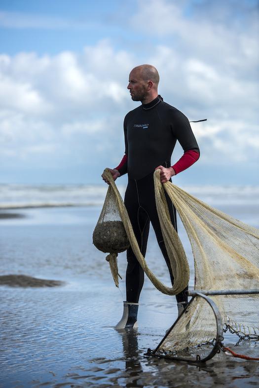 Zot van de Noordzee; Laat de liefde voor Noordzeevis zien