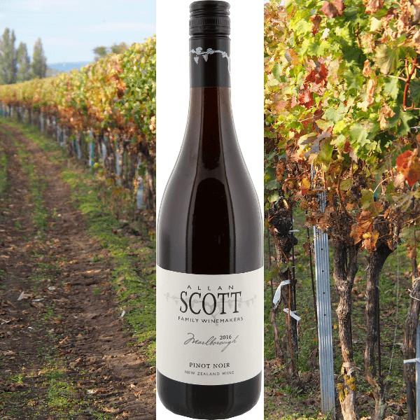Pinot Noir Alan Scott