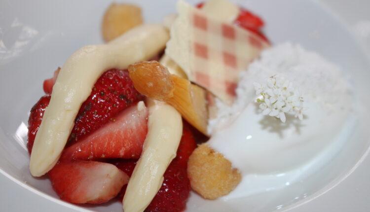 Restaurant Hemingway - Grand Hotel de Draak - Bergen op Zoom - Dutch Cuisine - Bib Gourmande_8544