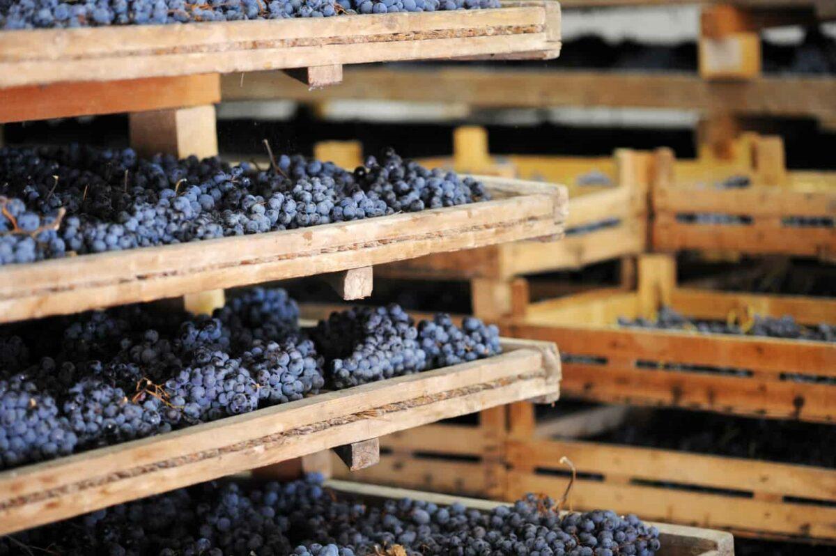 Farina druiven