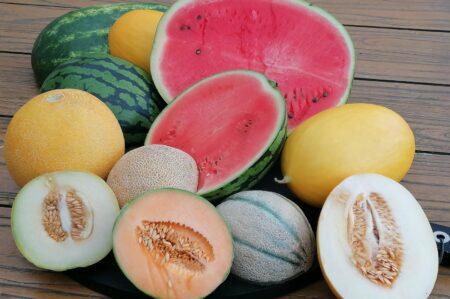 Soorten meloenen